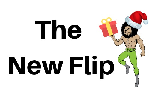 THE NEW FLIP